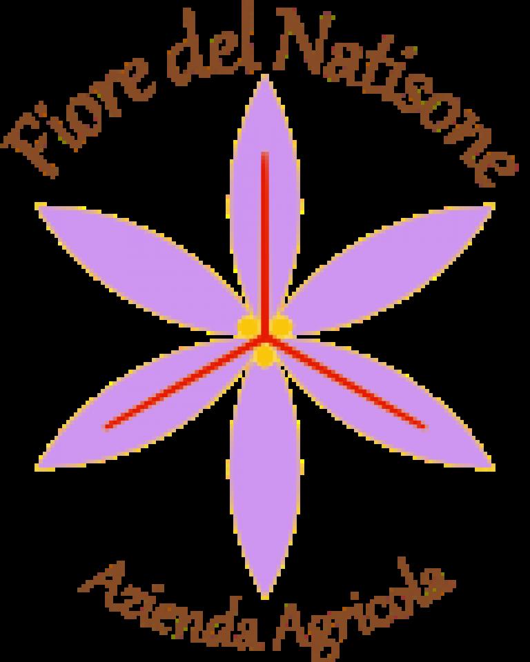 zafferano-di-andrea-logo-1486742386